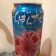 オリオン「いちばん桜」