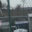 11/23 鈴鹿秋SP 最遅のトロバラ