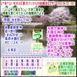 (文学・歴史)[古事記]通算315回【算太クンからの挑戦状・2018】