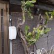 横須賀上町から汐入(2)