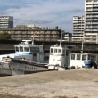 ムコイチ(西野渡船)