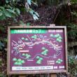 熊本 菊池渓谷