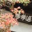 円覚寺日曜説教会で横田貫首さんのご本が配布されました。