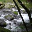 涼を求めて渓流へ