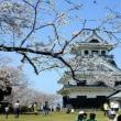 お花見に桜鯛 陽春を迎える卯月の候・・