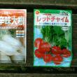 菜園日記:9月 お彼岸の三連休最終日(2018年9月24日)