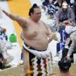 「平成30年春巡業 大相撲笠間場所」行ってきたよ!