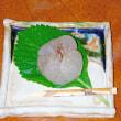 ◆今の和菓子【葛まんじゅう】