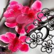 花彩々   紅梅日和