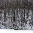 2011/12/17八幡の風景19