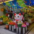2017.08.09 台東区浅草橋3 江戸通り: 招き猫が迎える店