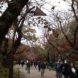 上野公園の1日