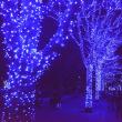 青の洞窟・渋谷・・5