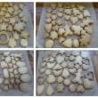 ママのリフレッシュサロン・・・型抜きクッキー♪