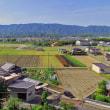 和歌山の里山を歩く
