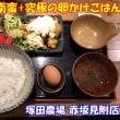 チキン南蛮 and 究極の卵かけごはん at 塚田農場 赤坂見附店