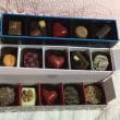 チョコがいっぱい!