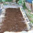 玉ねぎ栽培、第2、第3畝作り
