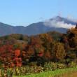 篠窪(しのくぼ)の秋 大好きな紅葉写真 2017