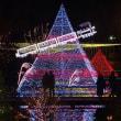 Pyramid of light☆あしかがフラワーパークから