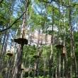 樹上から歓声聞こえる、森を遊ぶ蓼科のフォレストアドベンチャー。