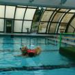 もっと泳ぎたい