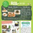 トマトクリーム色とサラダ色の REB新聞