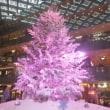 丸の内クリスマスツリー 2017