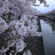 萩の市...4月15日開催予定です