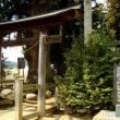 薄葉温泉神社