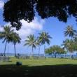 ハワイのお話 1