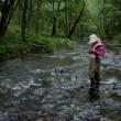 雨の釣り。ニジマス大繁殖。オショロコマ激減。