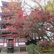 見ごろな松戸の本土寺の紅葉