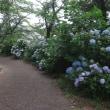 047佐野市富岡町・観音山公園の庚申塔(最寄り:佐野駅)