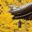 やっぱり京都にいこう、南禅寺