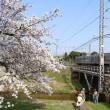 桜&鉄道! (2018.4.2 玉造温泉にて)