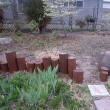 はじめての庭づくり