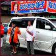 衆議院議員総選挙茨城県7区小選挙区ながおか桂子候補街頭演説会