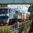 2017年8月24日 東海道貨物線 東戸塚 EF210-110 8052レ
