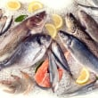 健康増進の鍵:より多くの魚介類を食べること、22年間の研究結果から