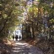 常光寺の紅葉色めく自然休養林・殿様街道ウォーキング⑥