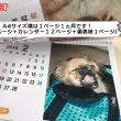 カレンダーの種類(業者依頼タイプ-マルチブック-)