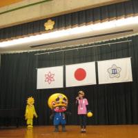 桜燕日記 Nov. 11, 2018