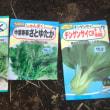 あのね~♪チンゲン菜と春菊を播種したYO!!!PartⅡ