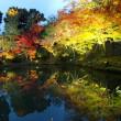 京都へ兄妹旅行
