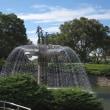 9月22日、昭和記念公園散策 & コスモス~♪