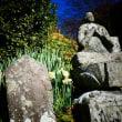 『寺社の花』 真勝寺