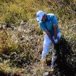 Aberdeen standard investments Scottish Open championship