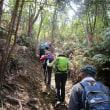 ⑪ 木の宗山登山 : 殆ど変わらない景観の中を    UP3日目