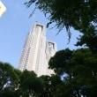夏の日に:その一時に、沖縄と築地